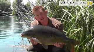 Betalin Our Number One Hookbait Enhancement