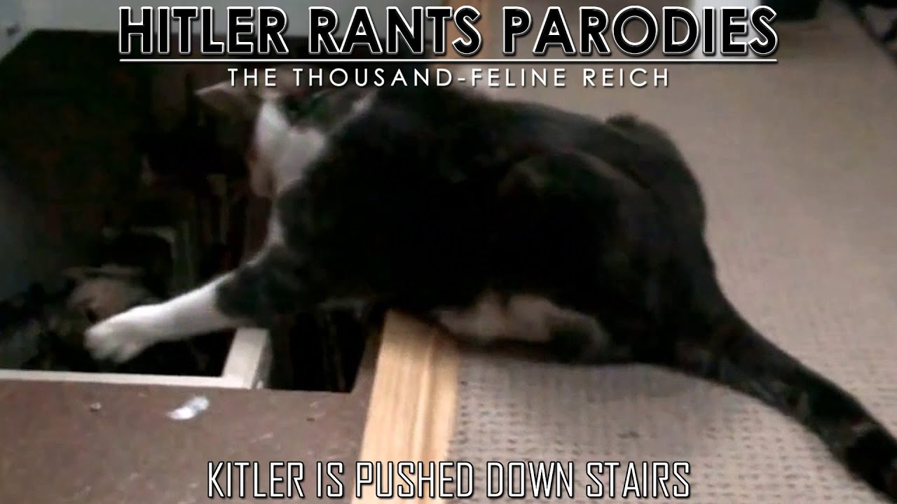 Kitler is pushed downstairs