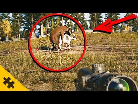 Far Cry 5 - СЕКРЕТ БЫЧЬИХ ПОЛОВЫХ ОРГАНОВ и ФЕРМЫ ДЕЙВЕНПОРТА