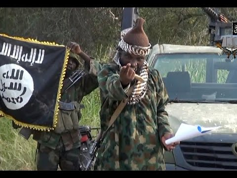 Boko Haram is not a Nigerian problem, it's an African problem - analyst