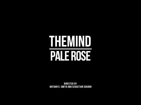 theMIND Pale Rose rnb music videos 2016