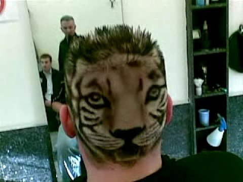Friseur Mens World Köln Ehrenfeld Cut Master Adnan Okutan Tiger Look