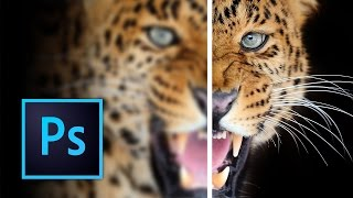 How to Sharpen Images in Photoshop