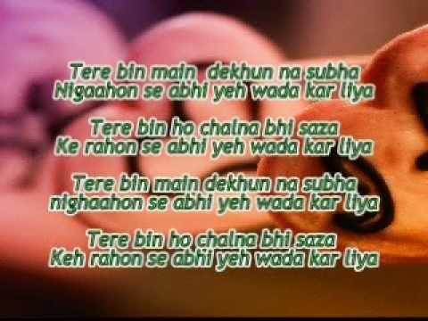 Tere bin - Dil to bacha hai ji (With lyrics)