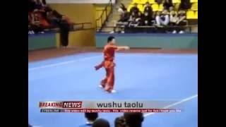 wushu taolu the original video