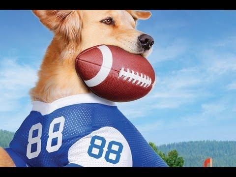 Dog Football For Nintendo