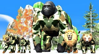 Army color dress wild animals finger family song for kids,Gorilla,Lion,bear,Tiger,arcus n media kidz