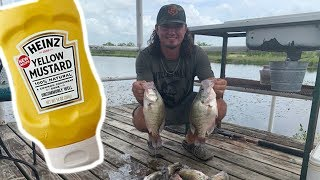Summertime Crappie Fishing! {Catch Clean Cook} Mustard Covered Fish!