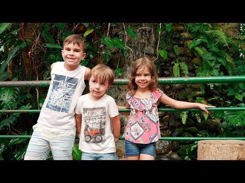 ZOOLÓGICO COM OS PRIMOS!! Maikito no Parque Zoobotânico Orquidário - Daily Vlog Familia Brancoala