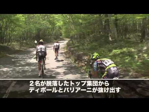 Tour of Japan 2013 4th Stage