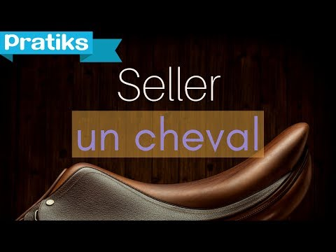 Equitation - Comment seller un cheval ?