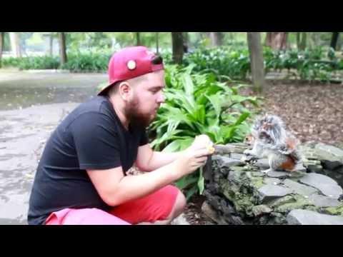 Daily  Vacaciones- Mexico-Alimentando ardillas- con Rafi zart