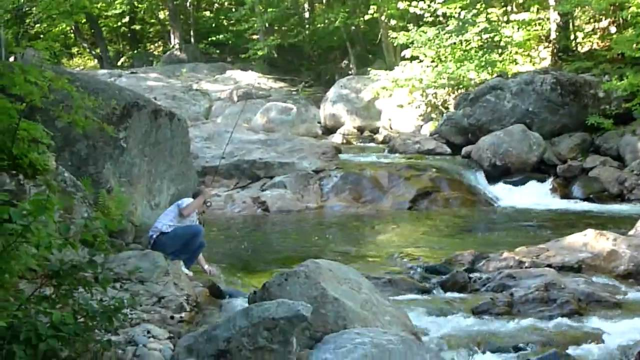 White mountains nh fly fishing for brookies youtube for Colorado fish stocking