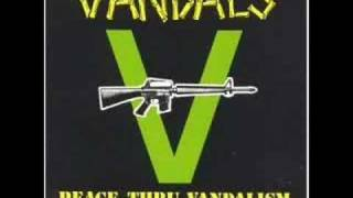 Watch Vandals Viking Suit video