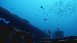 Malta Dive Sites - HMS Hellespont