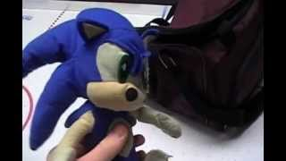 Sonic and the Others in Florida - Part 1