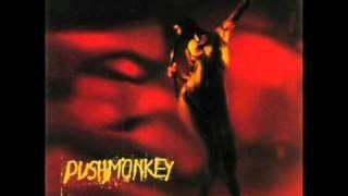 Watch Pushmonkey Ashtray Red video