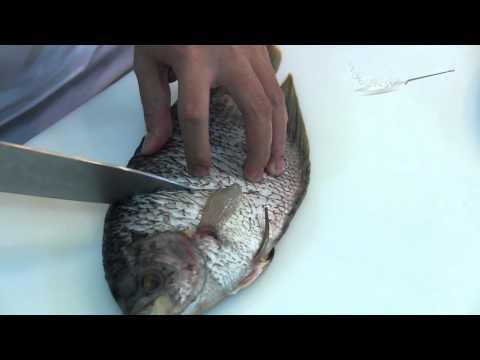 Pesmol Gurame (2/6) - Cara Menyiapkan Ikan