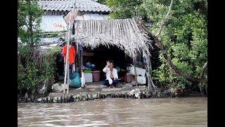 Ký sự miền Tây: Sông nước Cà Mau