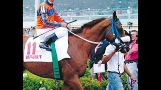 CAFAJESTE - Clásico Del Caribe 2003