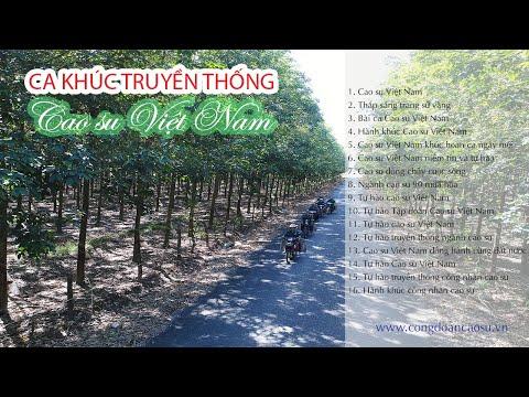 Ca khúc truyền thống Cao su Việt Nam