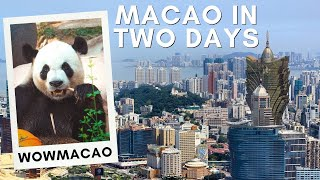 MACAO VLOG - What to See & Do in 2 Days