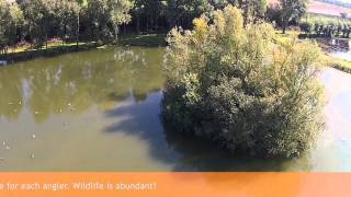 The Carp Specialist - Het Broek - Carp Lake - An areal view