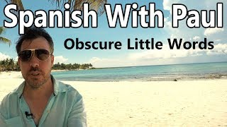 Obscure Little Words - Spanish With Paul