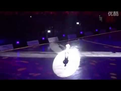 "Johnny Weir - Artistry on Ice 2014,""When love is gone"""