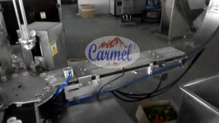 Cap Liner Inserting - Mesin Insert paper rubber ke dalam tutup botol