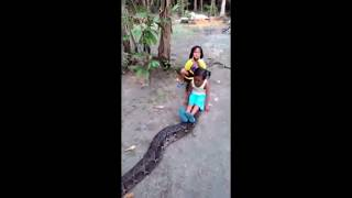 Two little girls playing with big giant python snake, must watch this video