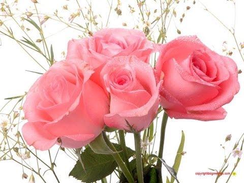 I love how you love me by moondog1219 b97ca067d singsnap karaoke pretty flowers for a pretty song mightylinksfo