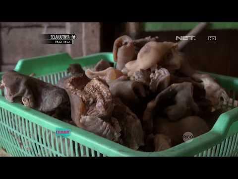 SALIHA - Manfaat Daging Kambing