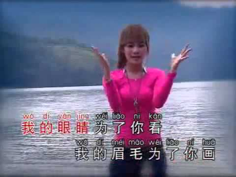 Liana Tan - Wo De Xin Li Zhe You Ni Mei You Ta