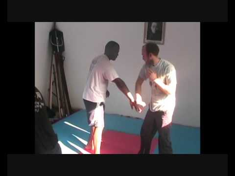 SOUTHERN PRAYING MANTIS KUNG FU TRAINING DRILLS