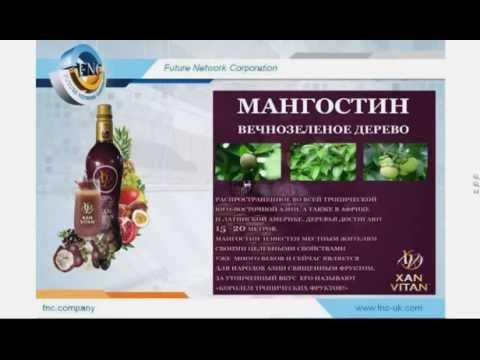 Future Network Corporation   100% сок из мангостина