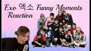 Exo Funny Moments 엑소 Reaction