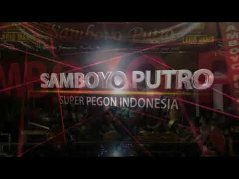 Download Lagu Samboyo Putro Bidadari kesleo MP3 Free