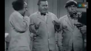 Three stooges থ্রি স্টুজেস   Bangla Dubbing   HD    Part   01 low
