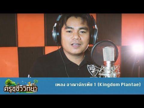เพลง อาณาจักรพืช 1 (Kingdom Plantae) - ครูชุชีววิทยา COVER [เพลง Gustavo Lima - Balada Boa]