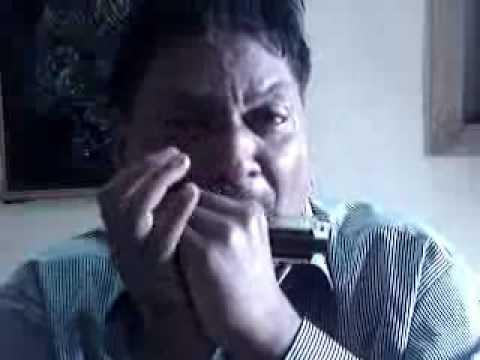 Piya tu ab to aaja  harmonica
