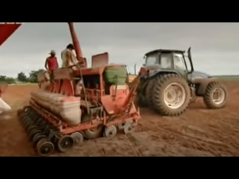 Paraguay Deforestation: the soy invasion - Tropic of Capricorn - BBC travel