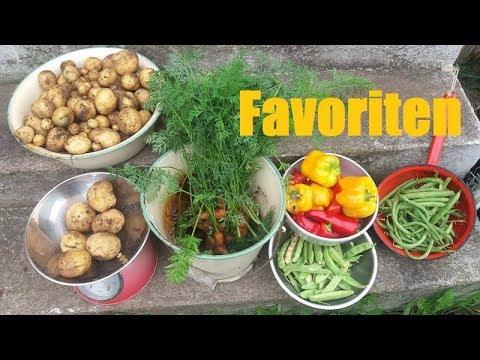 Die Top 13 Highlights Für Den Selbstversorger Garten