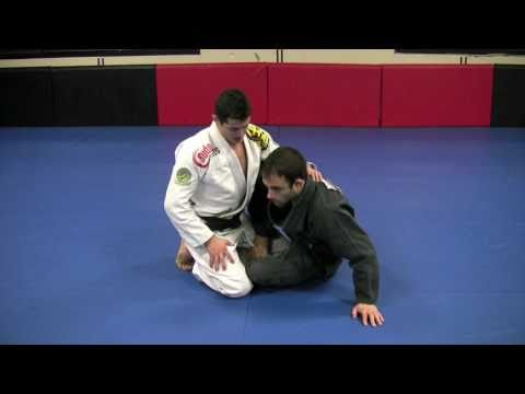 Caio Terra: Butterfly Guard Pass To The Back