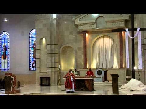 Misa Viernes Santo 29 Marzo 2013 - ecatolico.com