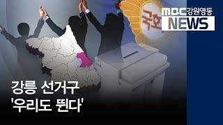 "R]강릉 선거구 ""우리도 출마합니다!"""