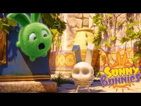 Cartoons for Children   SUNNY BUNNIES - SKELETON   Funny Cartoons For Children