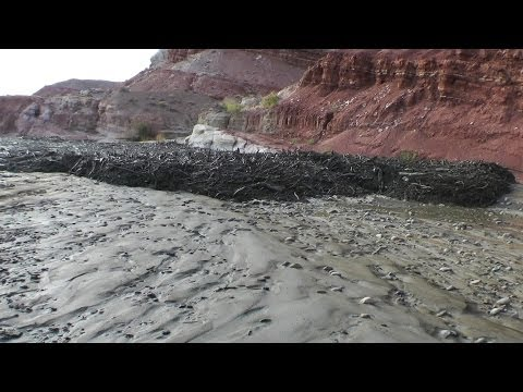 Amazing Flash Flood / Debris Flow Southern Utah HD