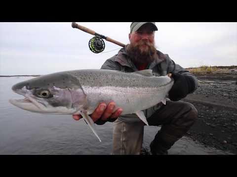 Alaska Steelhead fishing Trailer HD