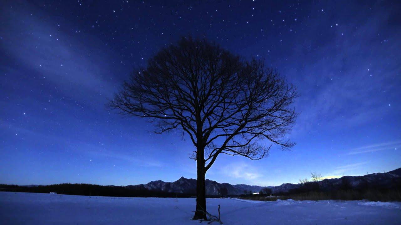 星の画像 p1_40
